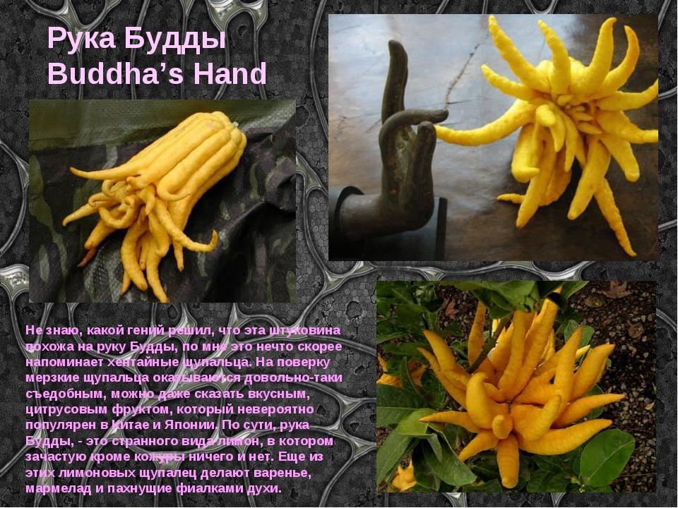 Рука Будды Buddha's Hand Не знаю, какой гений решил, что эта штуковина похожа...