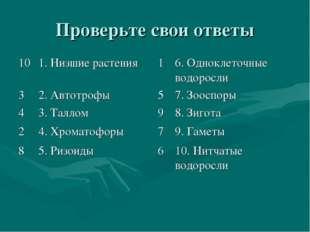 Проверьте свои ответы