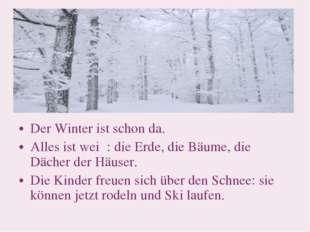 Der Winter ist schon da. Alles ist weiβ: die Erde, die Bäume, die Dächer der