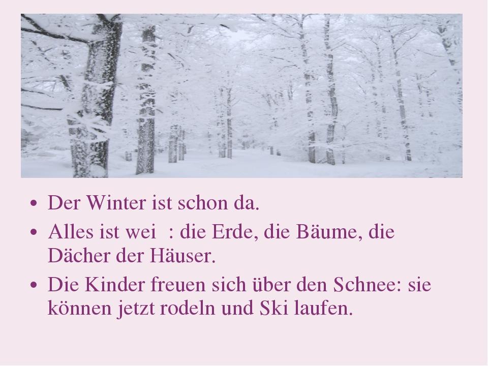 Der Winter ist schon da. Alles ist weiβ: die Erde, die Bäume, die Dächer der...