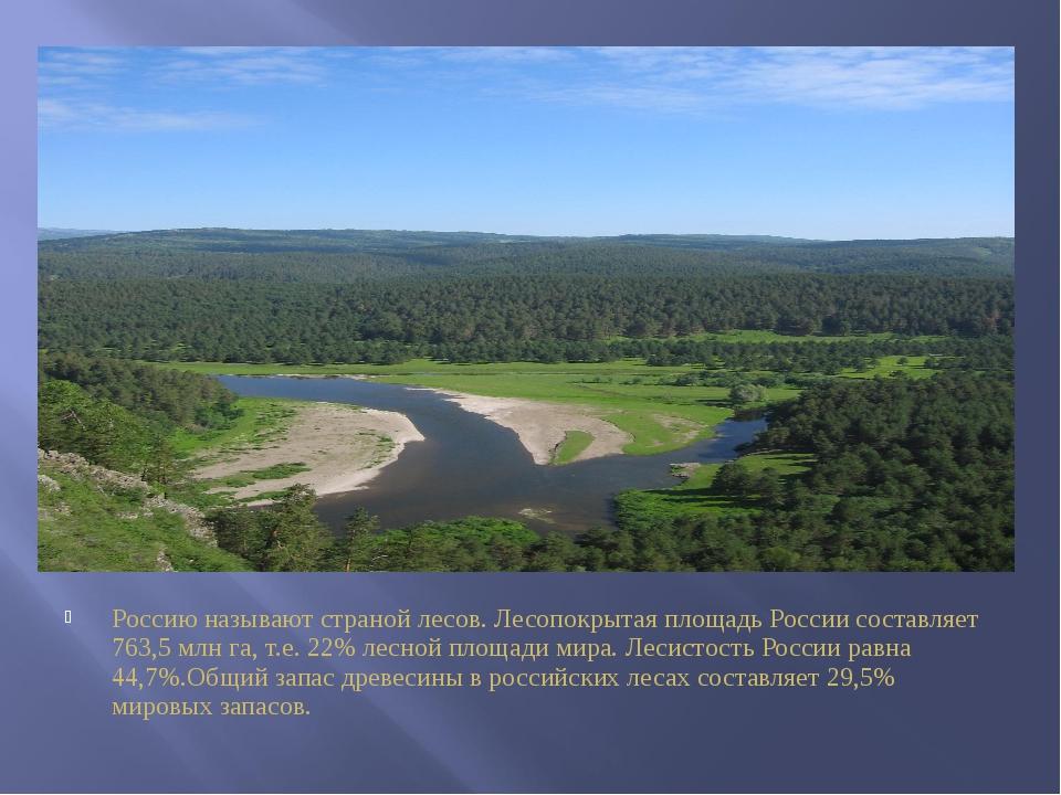 Россию называют страной лесов. Лесопокрытая площадь России составляет 763,5 м...