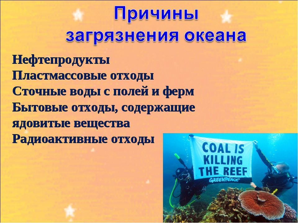 Нефтепродукты Пластмассовые отходы Сточные воды с полей и ферм Бытовые отходы...