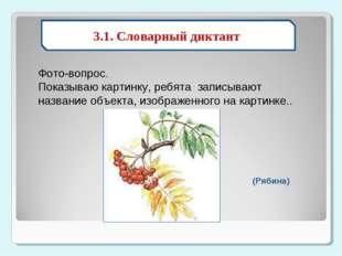 3.1. Словарный диктант Фото-вопрос. Показываю картинку, ребята записываю