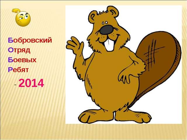 Бобровский Отряд Боевых Ребят - 2014