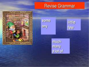 Revise Grammar some any much many a lot of little few