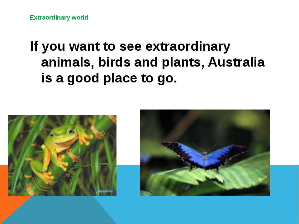 Extraordinary world 