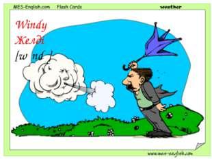 Windy Желді [wɪndɪ]
