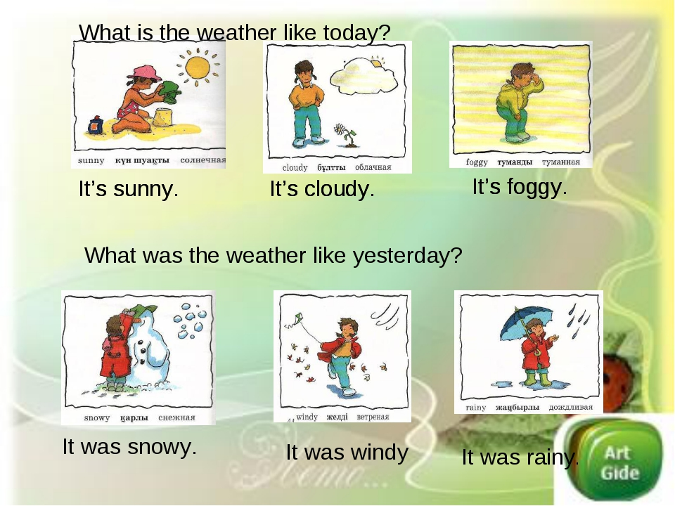 What is the weather like today? It's sunny. It's cloudy. It's foggy. It's sun...