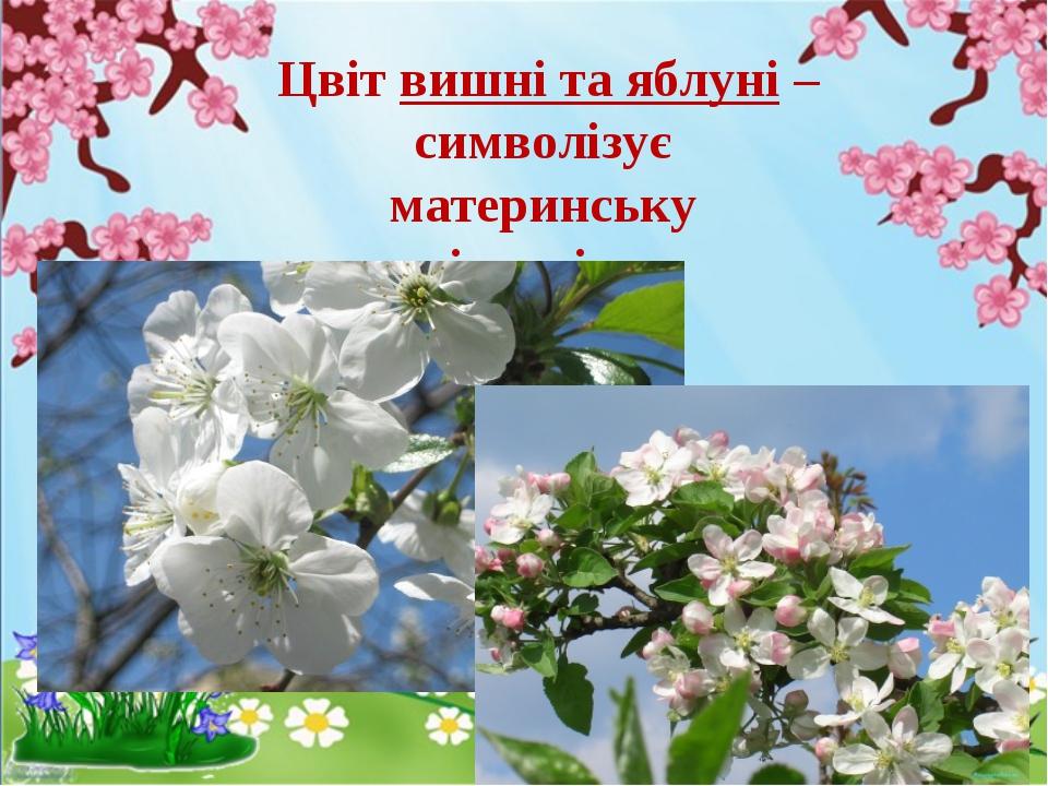 Цвіт вишні та яблуні – символізує материнську відданість.