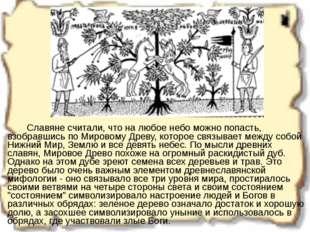 Славяне считали, что на любое небо можно попасть, взобравшись по Мировому Д
