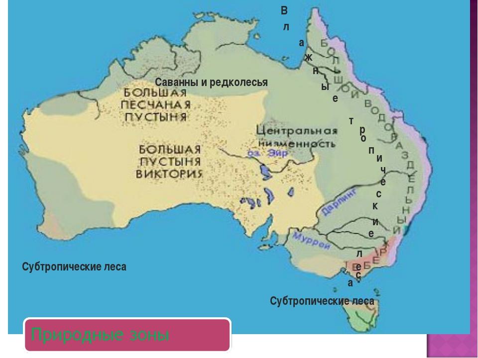 Саванны и редколесья Субтропические леса Субтропические леса В а ж н ы е л т...