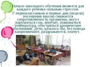 Начало школьного обучения является для каждого ребенка сильным стрессом. У