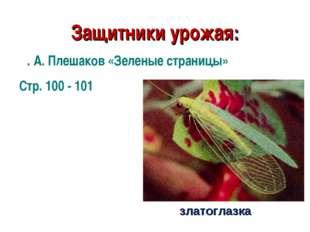 Защитники урожая: златоглазка А. А. Плешаков «Зеленые страницы» Стр. 100 - 101