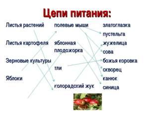 Цепи питания: Листья растений Листья картофеля Зерновые культуры Яблокиполев