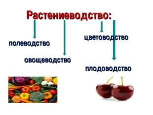 Растениеводство: полеводство овощеводство плодоводство полеводство овощеводст
