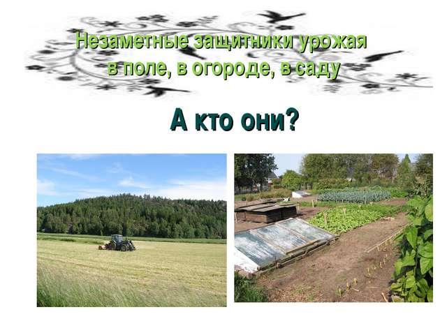Незаметные защитники урожая в поле, в огороде, в саду А кто они?