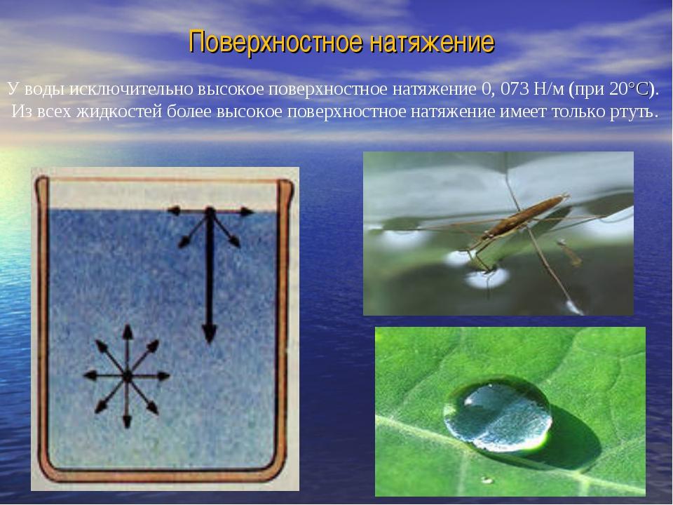 Поверхностное натяжение У воды исключительно высокое поверхностное натяжение...