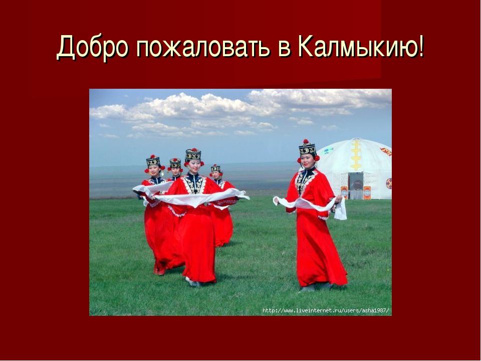 Добро пожаловать в Калмыкию!