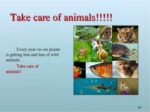 * Take care of animals!!!!! 		Every year on our planet is getting less and le