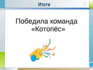 Итоги Победила команда «Котопёс»