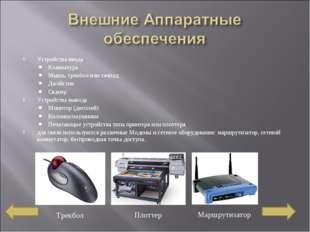 Устройства ввода Клавиатура Мышь,трекболилитачпад Джойстик Сканер Устройст