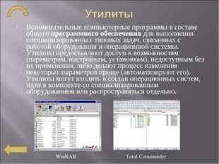 Вспомогательныекомпьютерные программыв составе общегопрограммного обеспече