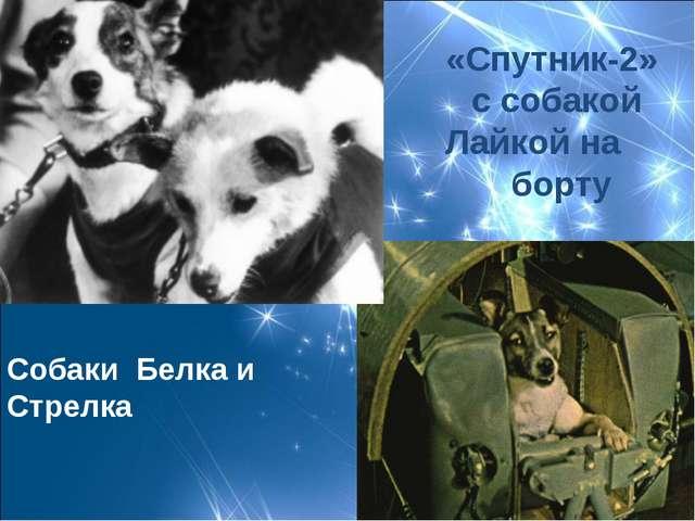 «Спутник-2» с собакой Лайкой на борту Собаки Белка и Стрелка