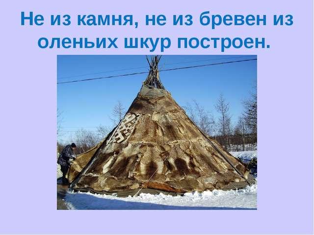 Не из камня, не из бревен из оленьих шкур построен.