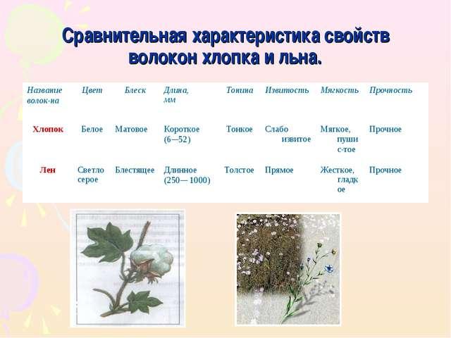 Сравнительная характеристика свойств волокон хлопка и льна. Название волокна...