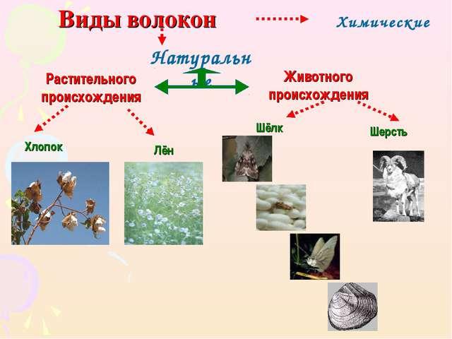Виды волокон Натуральные Химические Шерсть Растительного происхождения Животн...