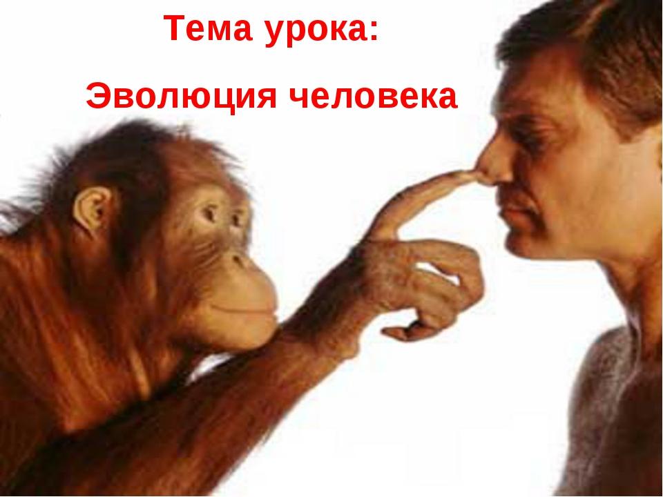 Тема урока: Эволюция человека