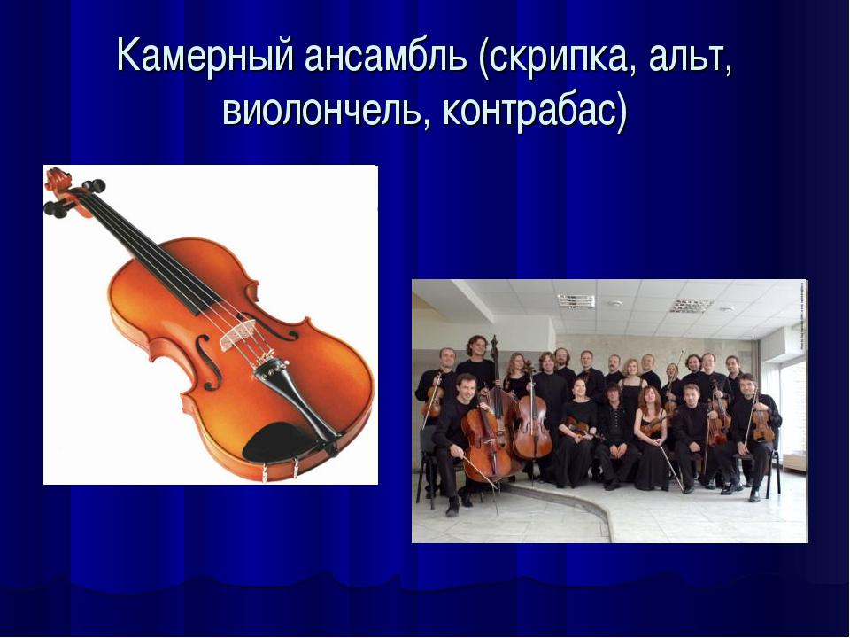 Камерный ансамбль (скрипка, альт, виолончель, контрабас)