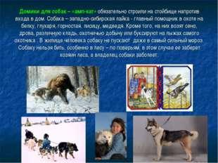 Домики для собак – «амп-кат» обязательно строили на стойбище напротив входа в