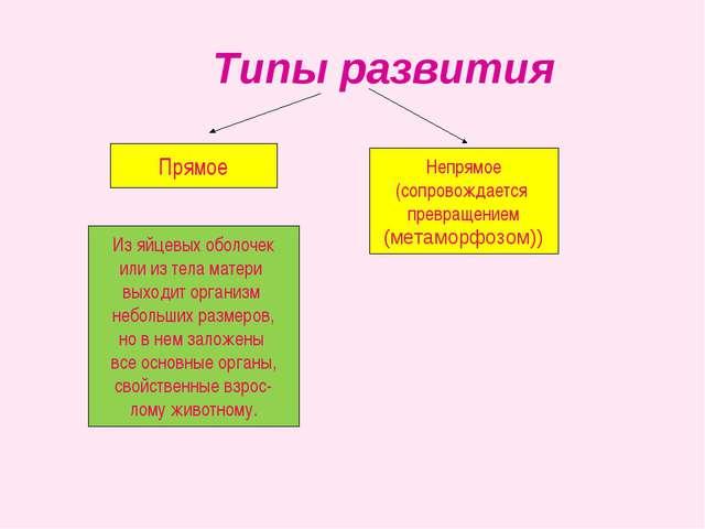 Типы развития Непрямое (сопровождается превращением (метаморфозом)) Прямое И...