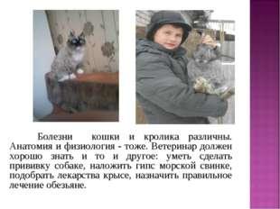 Болезни кошки и кролика различны. Анатомия и физиология - тоже. Ветеринар до