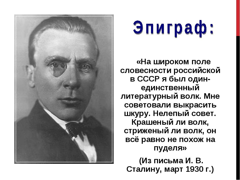 «На широком поле словесности российской в СССР я был один-единственный литер...