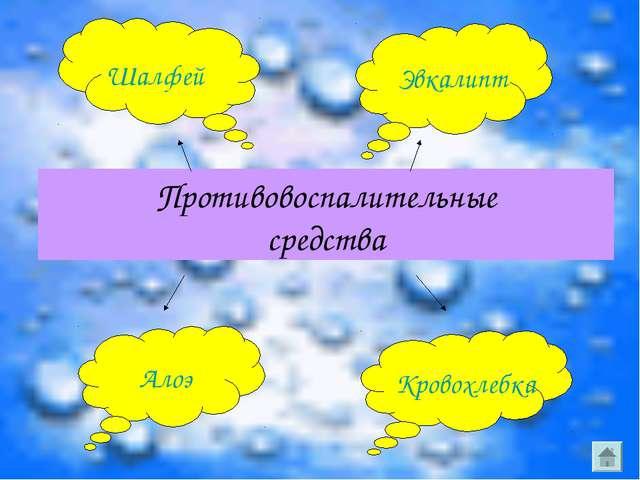 Противовоспалительные средства Шалфей Эвкалипт Алоэ Кровохлебка
