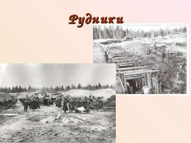 Рудники