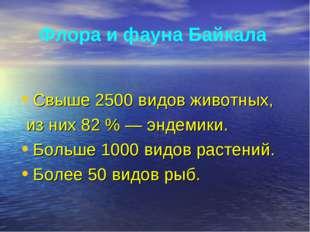 Флора и фауна Байкала Свыше 2500 видов животных, из них 82 % — эндемики. Боль