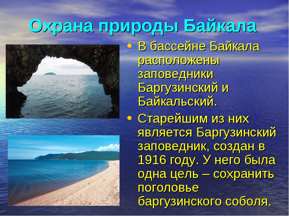 Охрана природы Байкала В бассейне Байкала расположены заповедники Баргузински...
