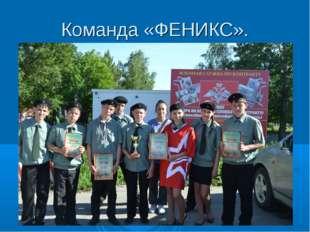 Команда «ФЕНИКС».