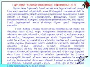 Қару-жарақ бөліктері атауларының мифологиялық мәні Тарихи даму барысында қаз