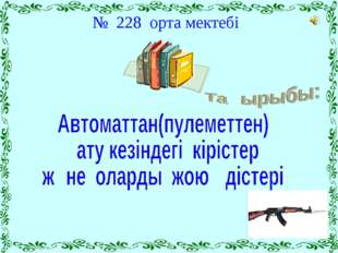 № 228 орта мектебі