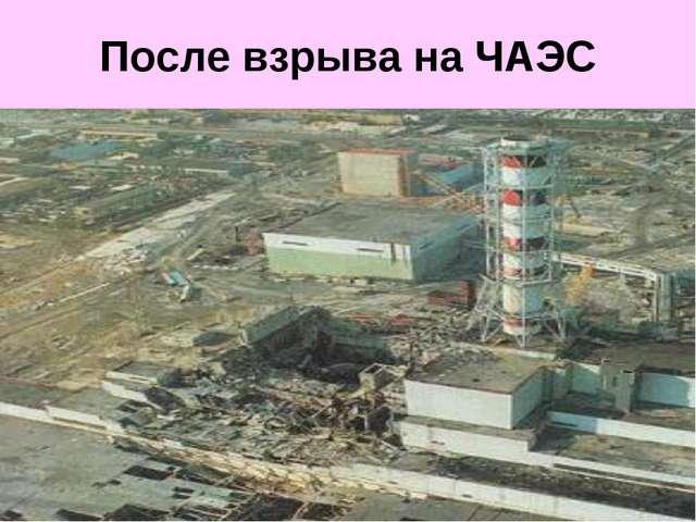 После взрыва на ЧАЭС