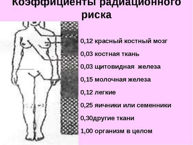 0,12 красный костный мозг 0,03 костная ткань 0,03 щитовидная железа 0,15 мол...