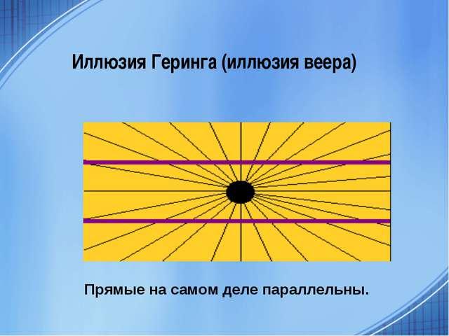 Иллюзия Геринга (иллюзия веера) Прямые на самом деле параллельны.