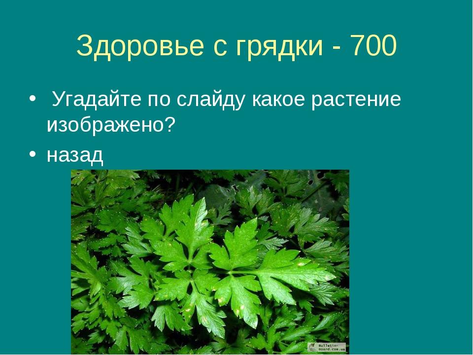 Здоровье с грядки - 700 Угадайте по слайду какое растение изображено? назад