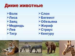 Дикие животные Волк Лиса Заяц Медведь Лев Тигр Слон Бегемот Обезьяна Жираф Ст