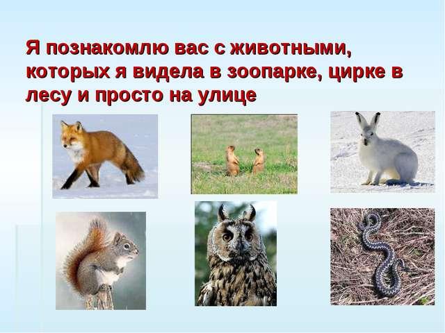 Я познакомлю вас с животными, которых я видела в зоопарке, цирке в лесу и про...