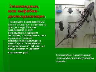 Земноводные, или амфибии-двоякодышащие, включают в себя животных, приспособл